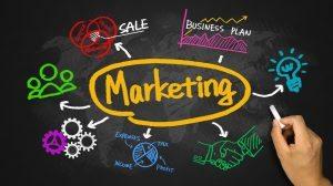 Marketing Black Board start a dropship business