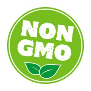 A green circle with the words Non GMO inside. Two leaves sit under the words.