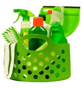 Strategies to Selling Environmentally Friendly Products