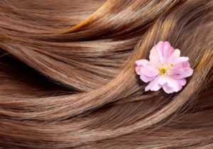 close up of hair with a flower