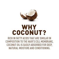 Wholesale Natural Hair Products: Coconut Opportunities
