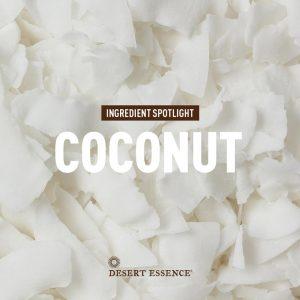 ingredient spotlight: coconut.