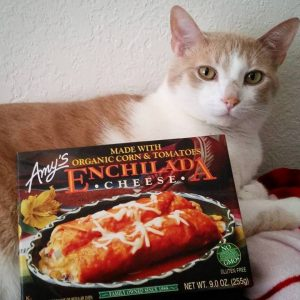 Cat with frozen Amy's enchilada box