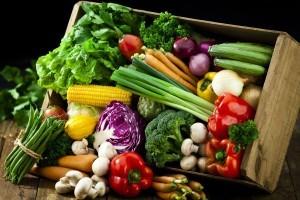 vegetarian baby formula dropship organic baby products