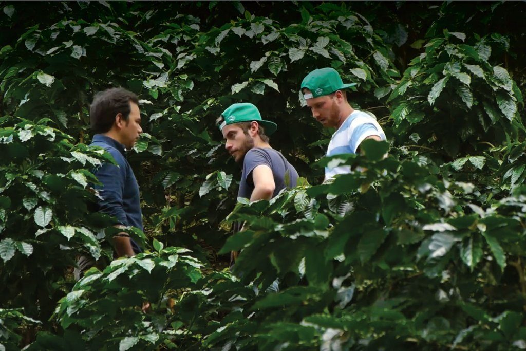 Wize Monkey`s Founders` Coffee Leaf Quest in Nicaragua