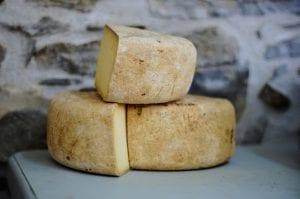 buy wholesale cheese