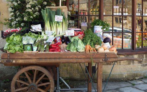 Natural food distributors to sell food online