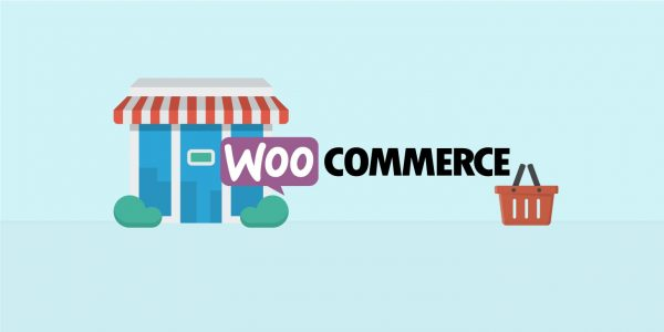 Using woocommerce plugin to launch your dropshipping online store