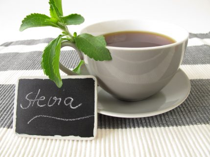 Top Wholesale Stevia Products to Sell Online