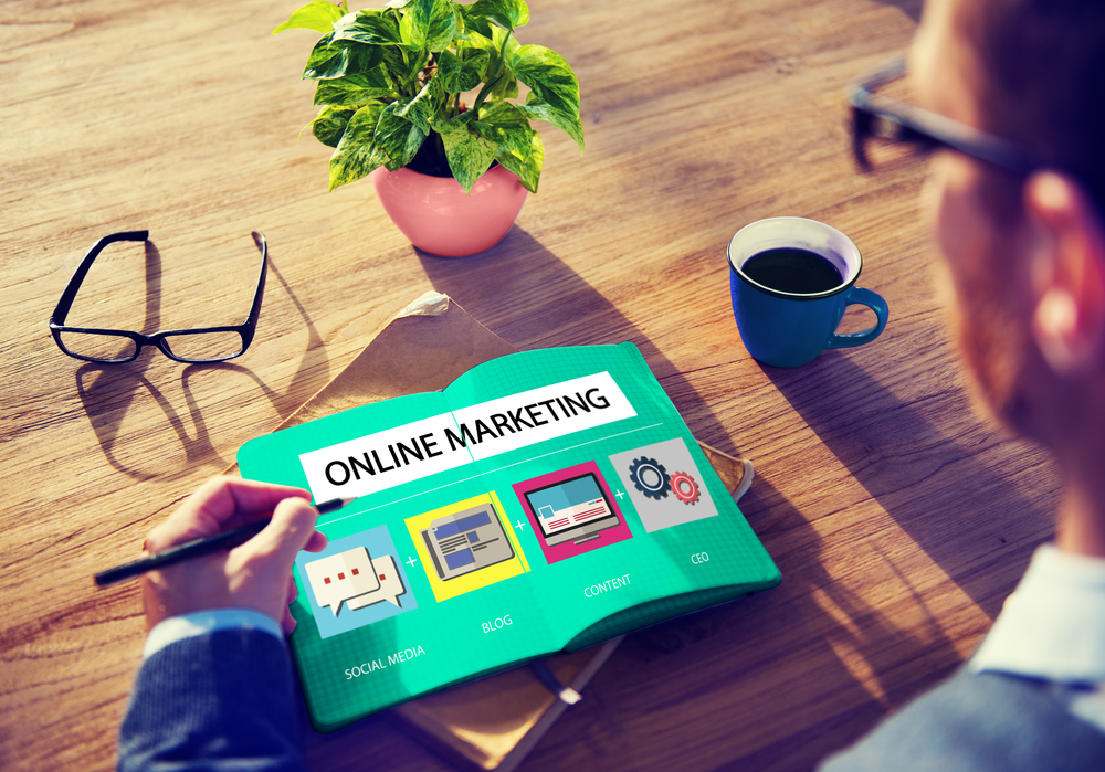 Online marketing strategy to dropship eco-friendly products
